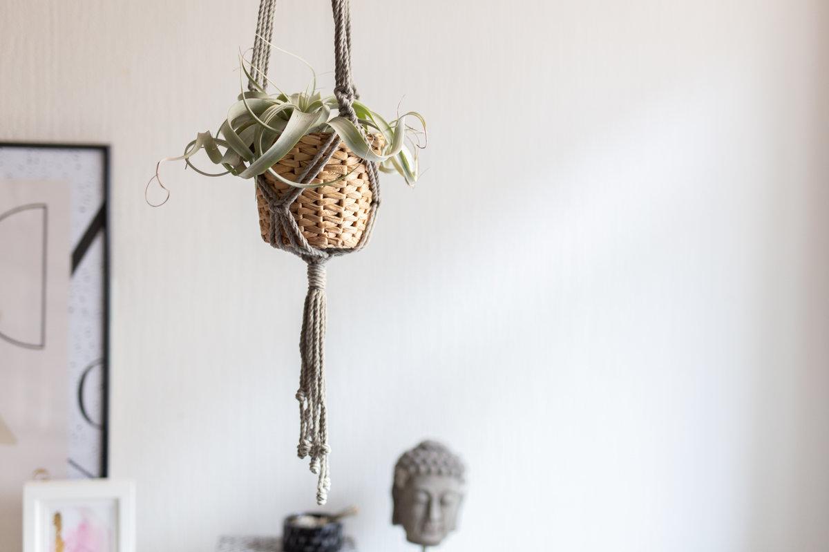 Mezglots puķu poda turētājs ar koka riņķi, #1