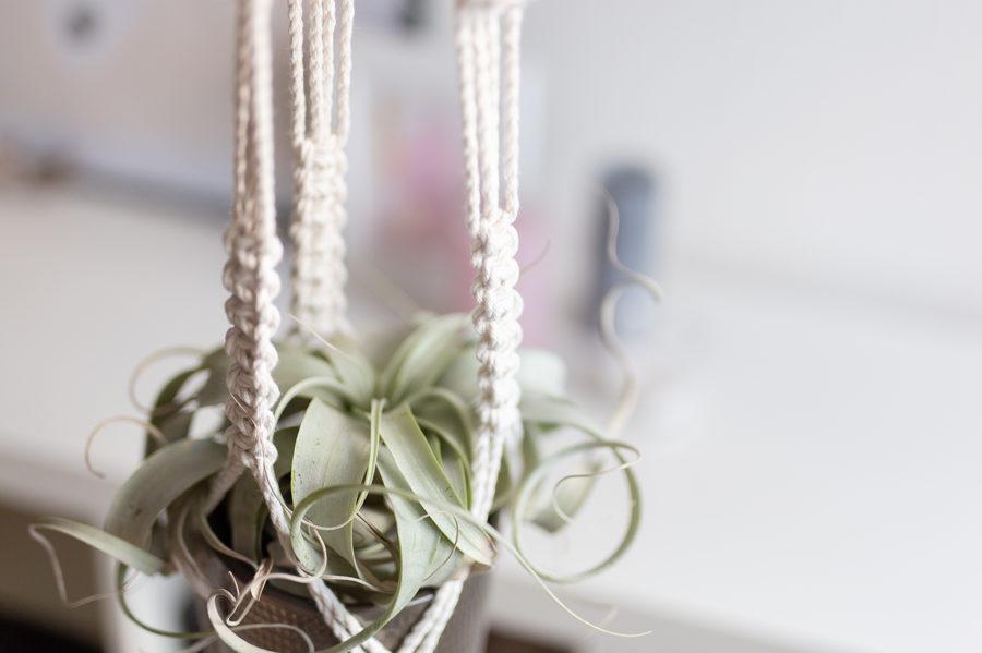 Puķu poda turētāja mezglošanas DIY komplekts no vītas auklas #3
